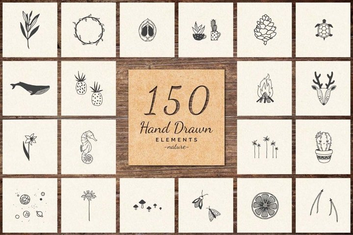 150 Hand Drawn Elements -Nature-