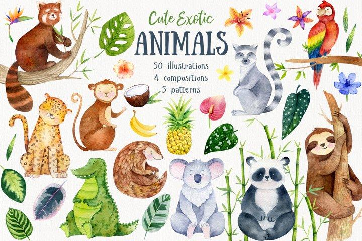 Cute Exotic Jungle Animals. Jungle patterns. Vol.2