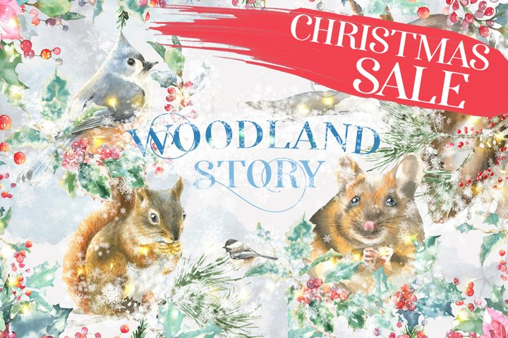 SALE! Christmas Watercolor Woodland Story