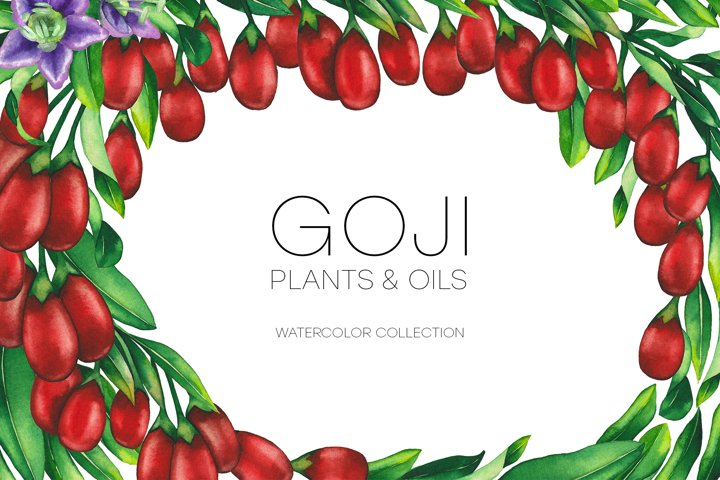 Watercolor goji collection