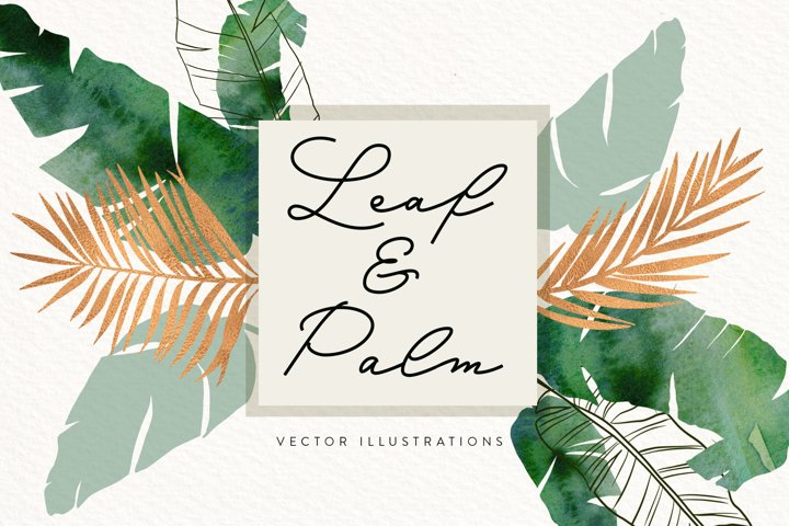 Leaf and Palm Vector Illustrations