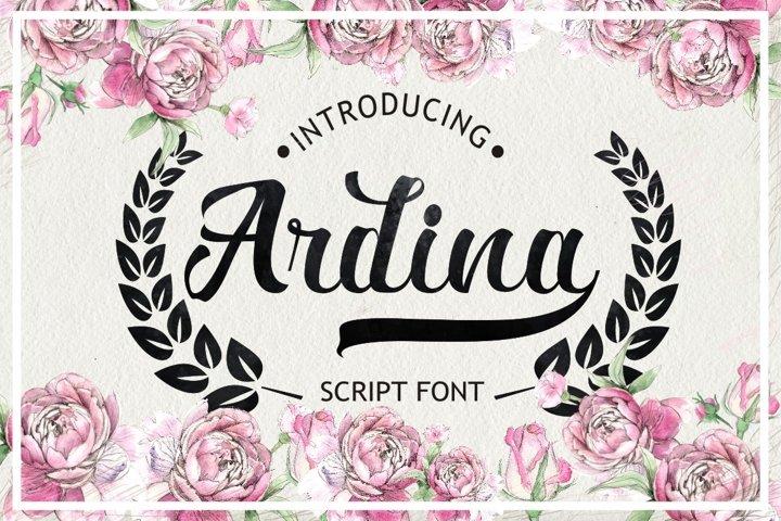 Ardina Script - Free Font of The Week Font