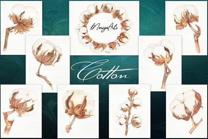 Cotton Boll, Wreath, Stem, Modern Farmhouse Watercolor Decor