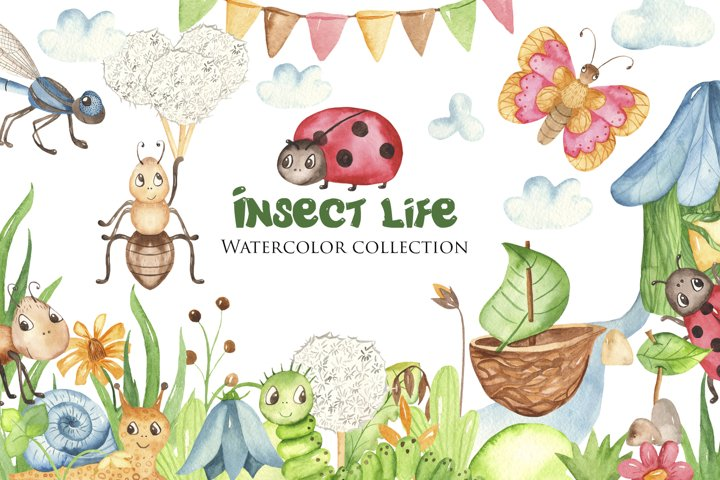 Insects Watercolor Clipart. Cards and seamless patterns