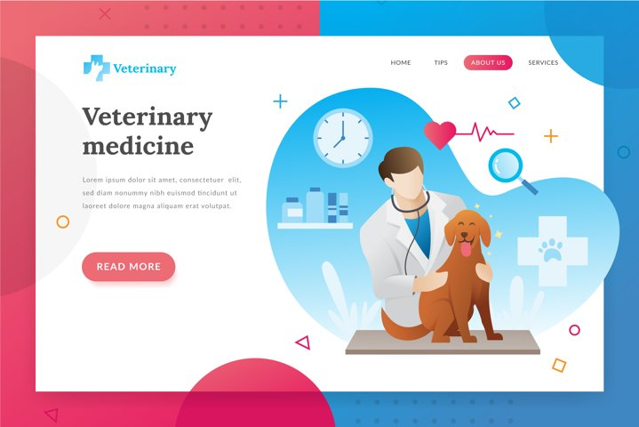 Veterinarian landing page illustration