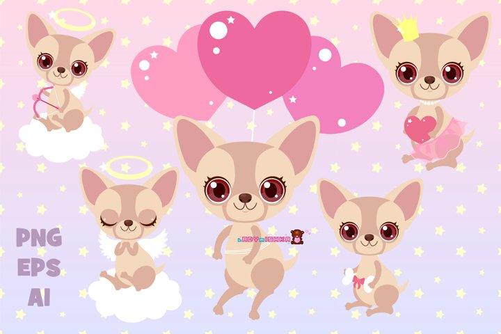 Chihuahua baby set