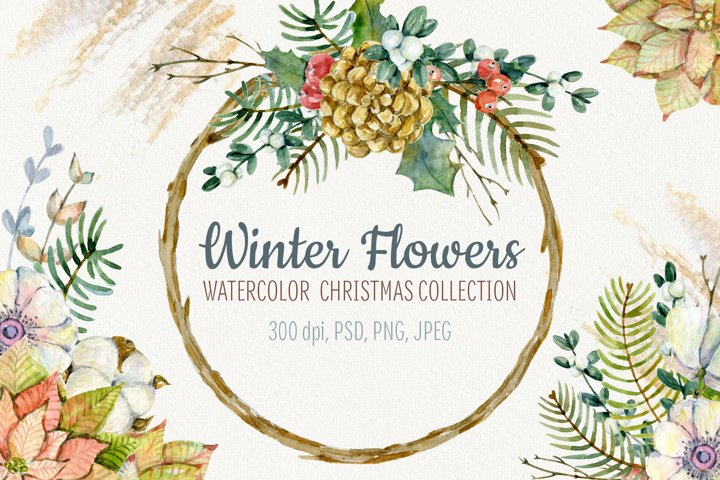 Winter flowers. Watercolor Christmas set