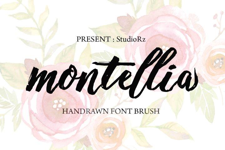 Montellia Brush