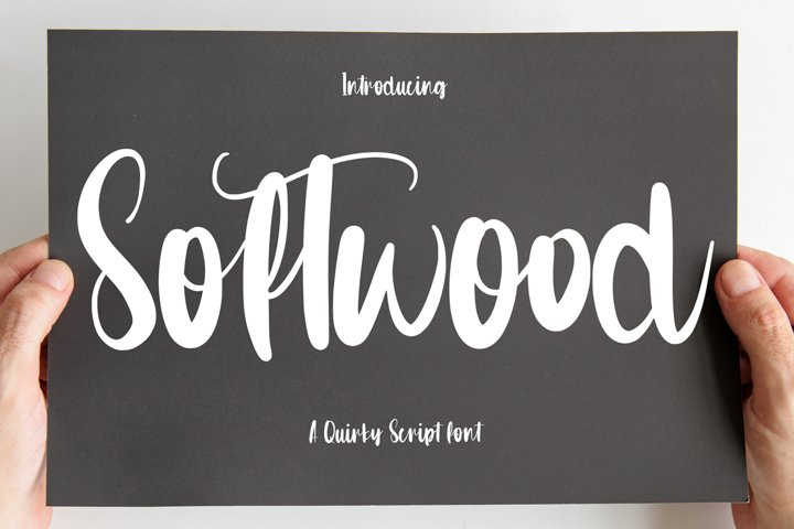 Softwood - Quirty Script Font
