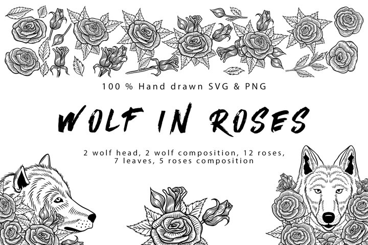 Wolf in roses set 100 hand-drawn