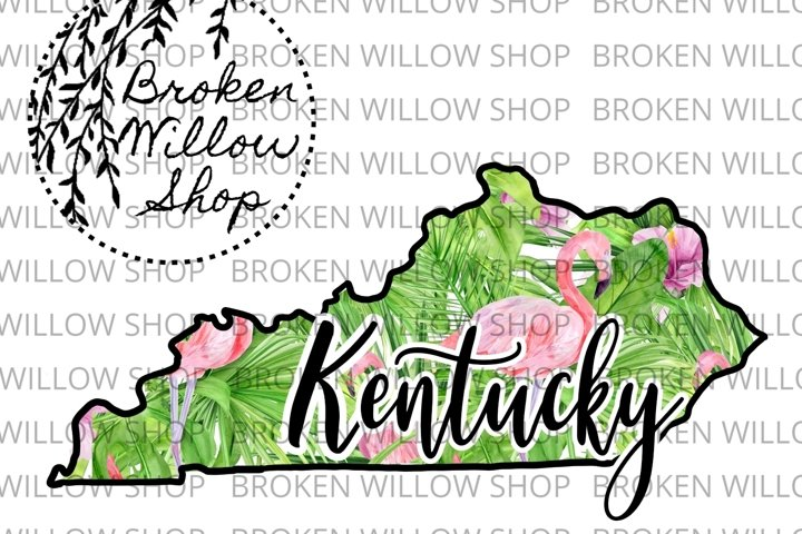 Hand Drawn Kentucky State Summer Flamingo Sublimation PNG