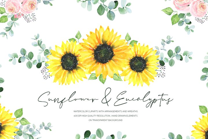 Watercolor Sunflower & Eucalypt. Digital PNG