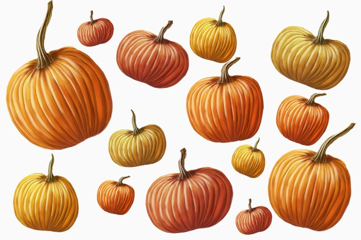 composed of pumpkins on white background