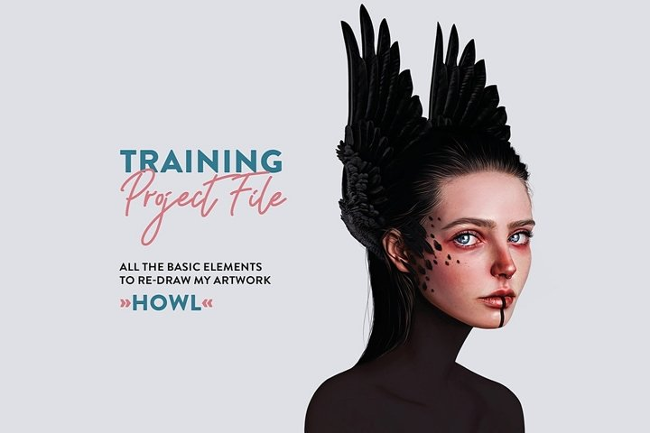 Training project file HOWL