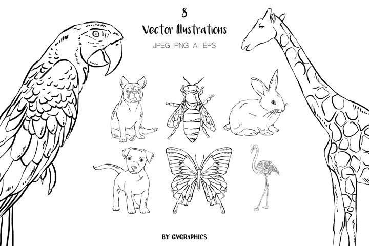 8 Hand Drawn Animals Illustrations