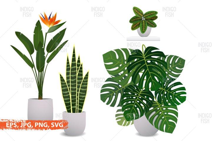 Sublimation home tropical plants clip-art