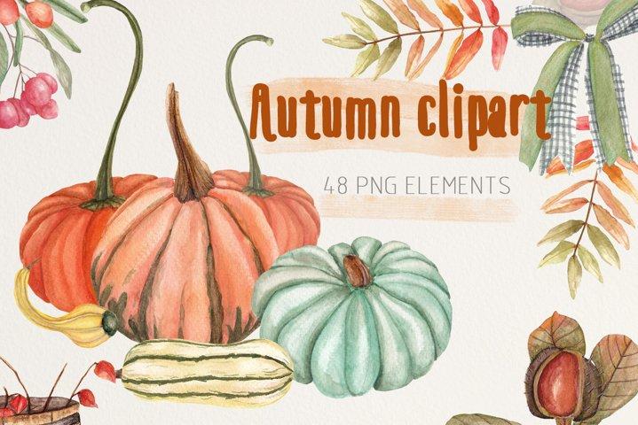 Watercolor autumn clipart.Fall pumpkin.