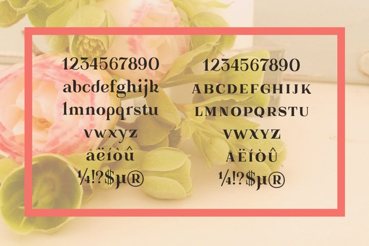 Gorni Typeface - Free Font of The Week Design1