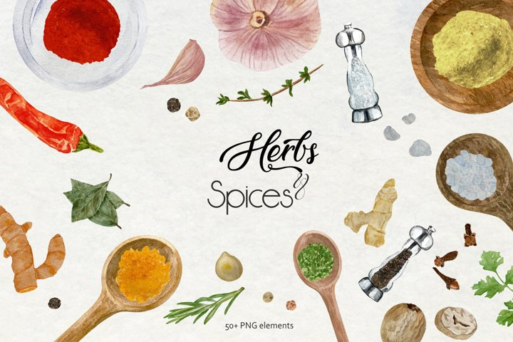 Watercolor Herbs And Spices Clipart