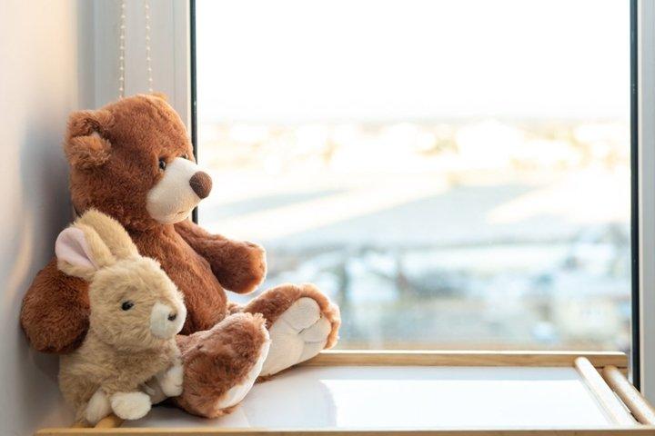 Teddy bear and bunny sits on window still.