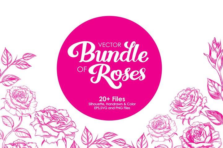 Roses Illustration Bundles