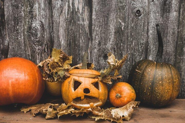 autumn carved funny pumpkin jack-o-lantern