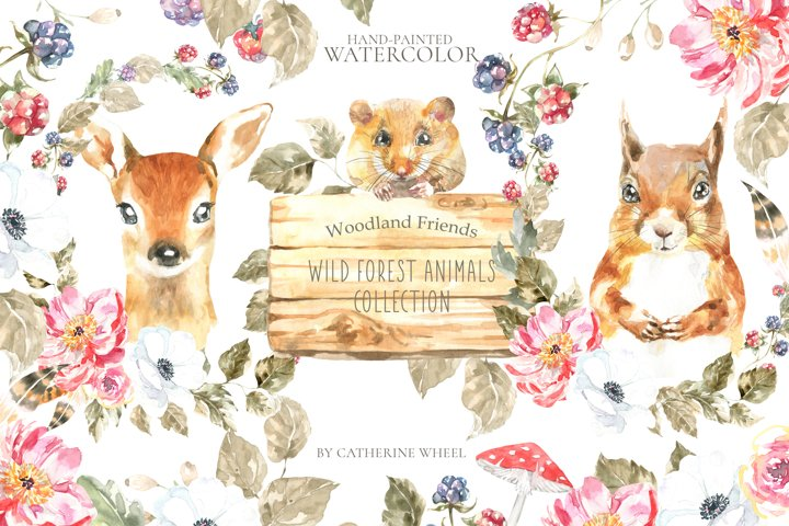 Watercolor Animals Woodland Friends