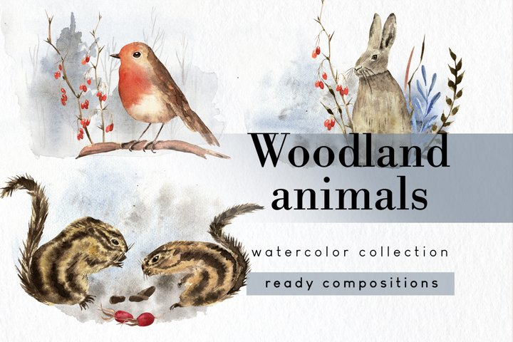 Woodland animals clipart ready compositions