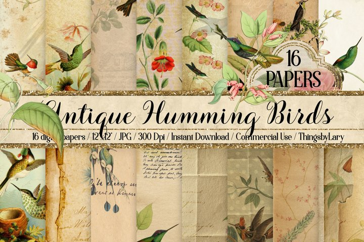16 Antique Humming Birds Trochilidae Nature Digital Papers