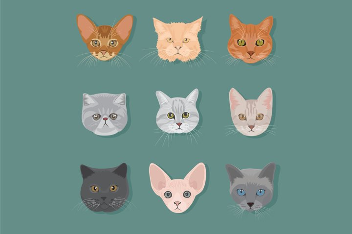 cat head type vector set