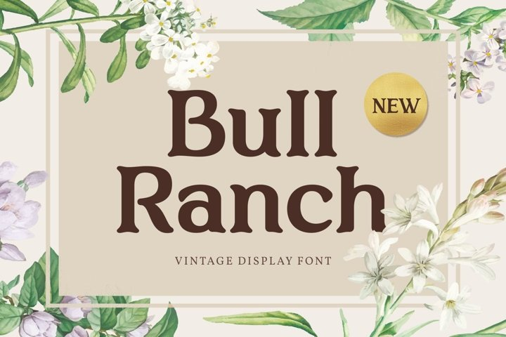 Bull Ranch - Vintage Display Font