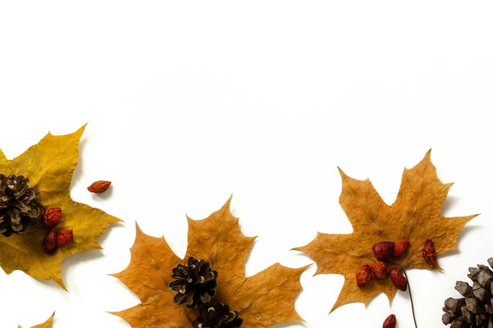 Maple leaves, cones and rosehip berries