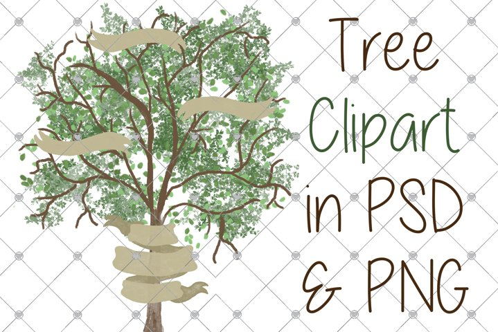 Family Tree clipart, Tree clipart, Watercolour Tree clipart,