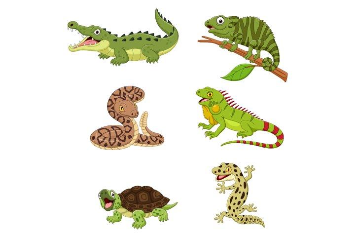 Set of Six Amphibian and Reptile Animals