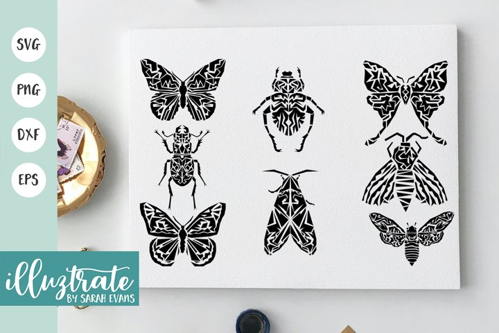 Bugs and Beetles SVG Cut Files| Stencil themed designs