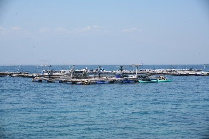 fish cages in the sea
