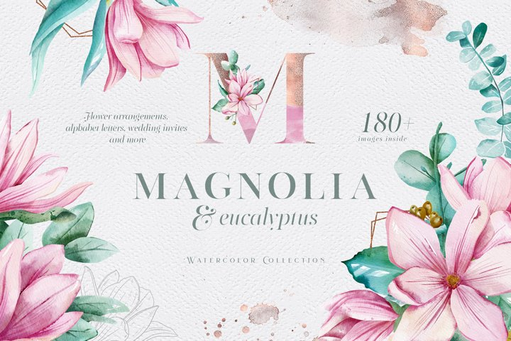 Magnolia & Eucalyptus Watercolor Set