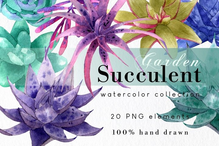 Watercolor Succulent Clipart Set, Hand Drawn Planner Clipart