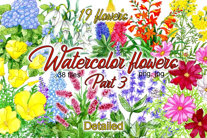 Watercolor flowers collection. Part 3