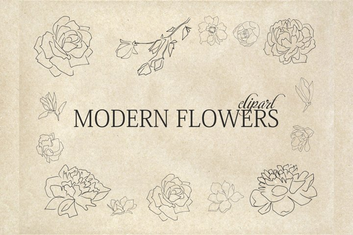 Modern Flowers - Botanical Line Art - Floral Clip Art Modern