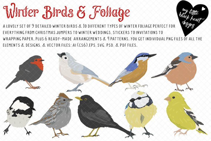 Winter Birds and Foliage