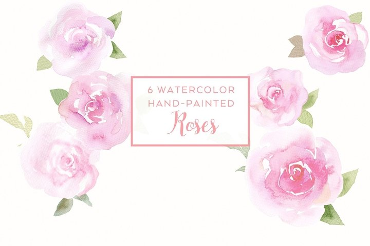 6 watercolor rose illustrations