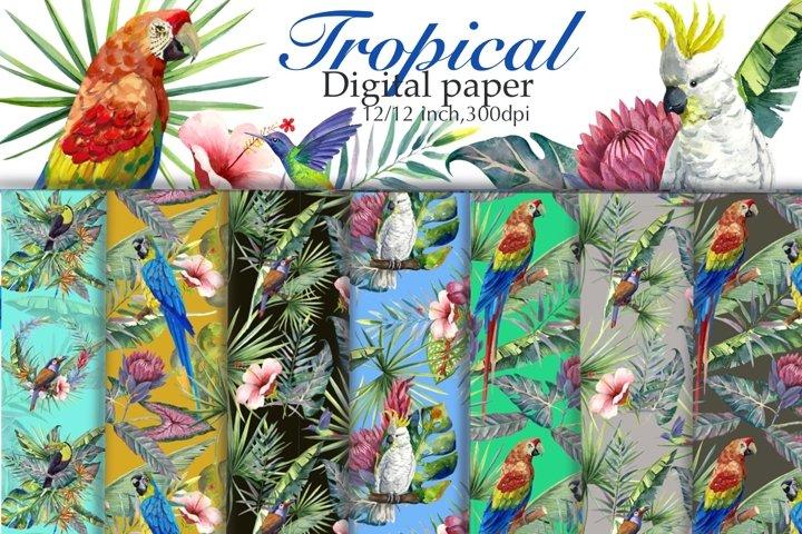 Tropical Digital Paper,Seamless Pattern