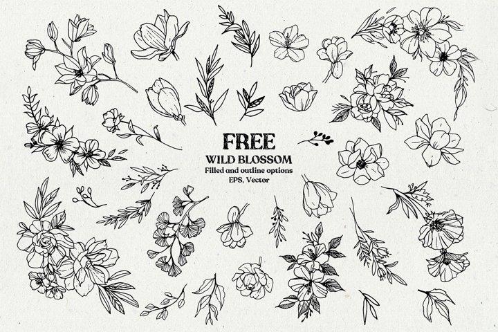 Wild Blossom - Hand sketched Floral & Botanical elements