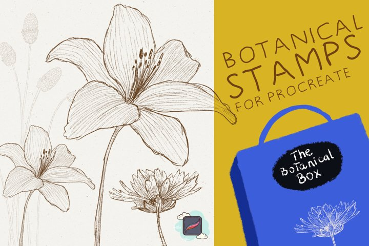 The Procreate Botanical Box