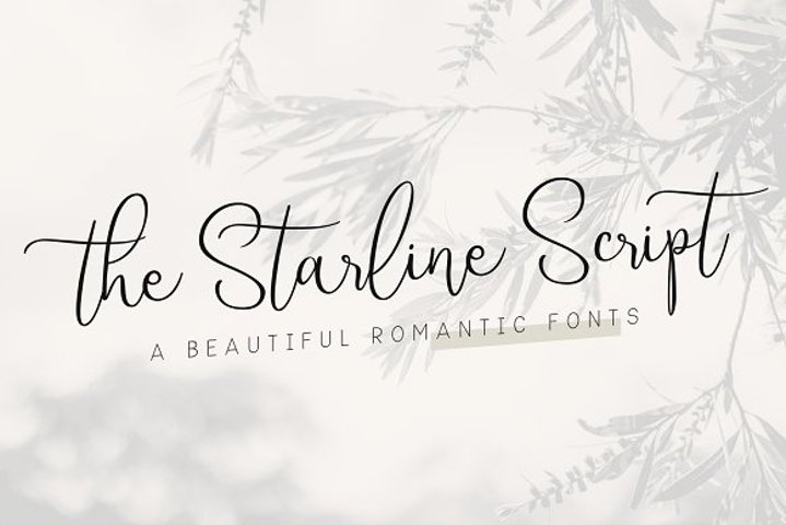 Starline | Beautiful Script Fonts
