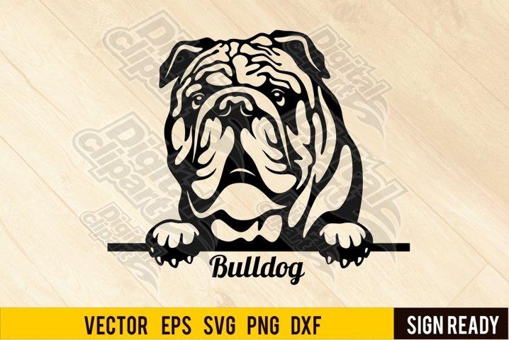 Peeking English Bulldog DOG SVG Clipart Vector Cut