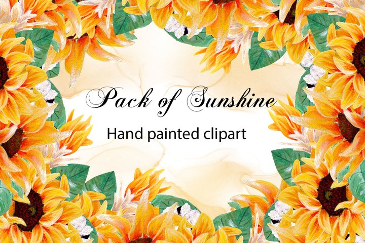 Pack of sunshine- hand painted sunflower collection