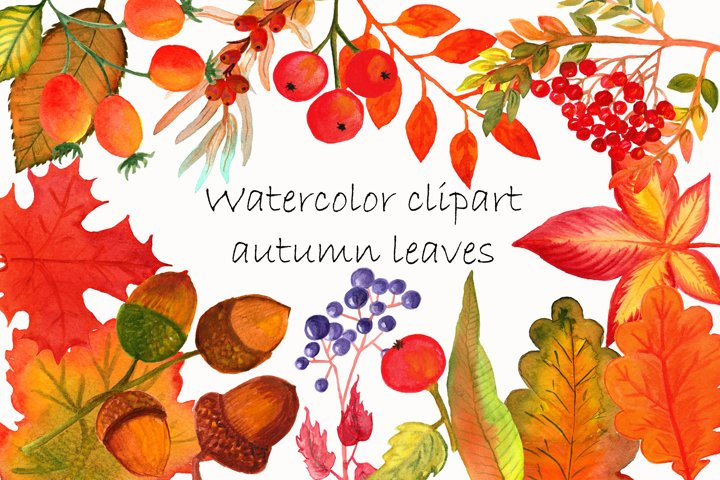Watercolor clip art autumn leaves watercolor autumn wreaths