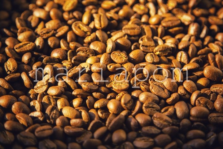 Closeup of Coffee Beans Dark Background